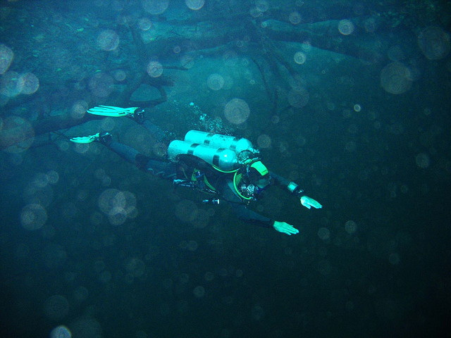 Cenote Angelita diving